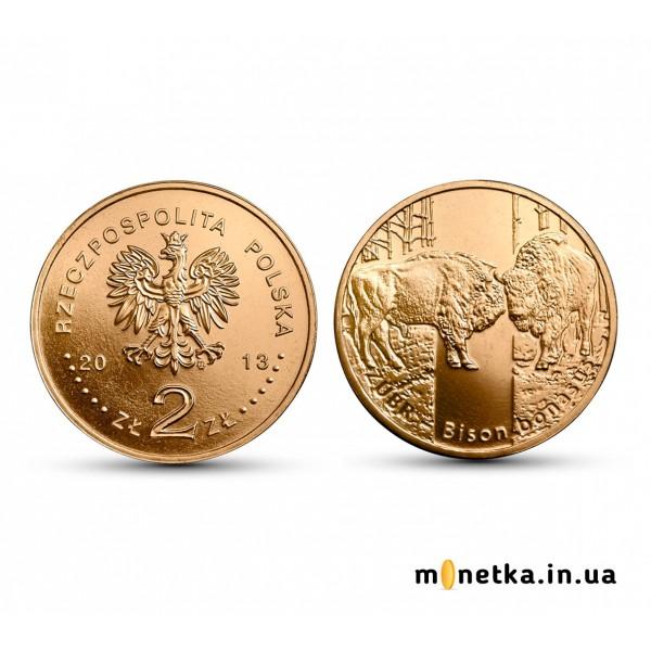 Польша 2 злотых  2013, Зубр