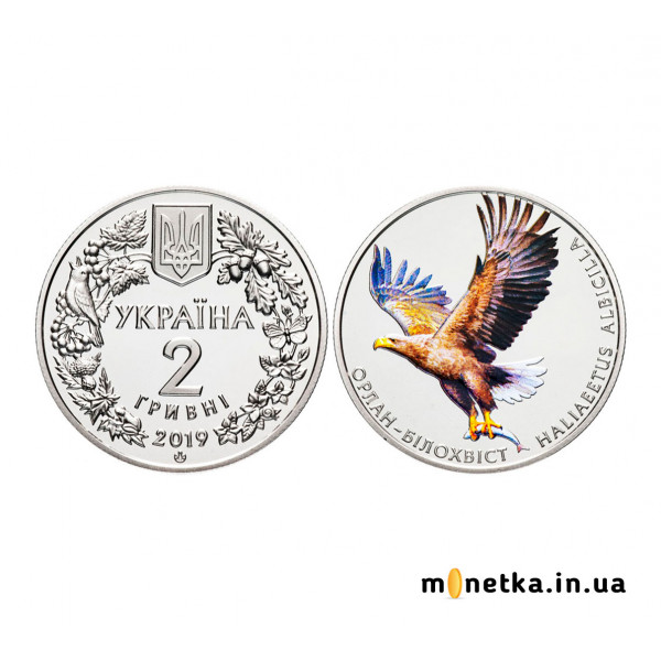 2 гривны 2019 Украина - Орлан-белохвост (Орлан-білохвіст)